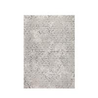 Miller tapijt grijs 170 x 240 cm TOONZAALMODEL