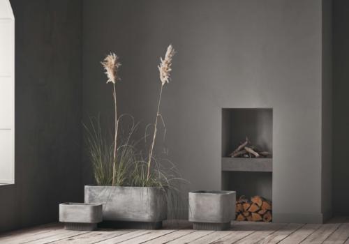 The power of plants: strak & minimalistisch