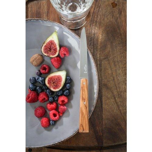 Opinel Bon Appétit Southern tafelmessen set van 4 rvs/olijf