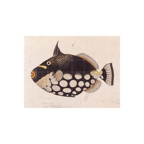 IXXI IXXI wanddecoratie - black fish 160 x 120 cm