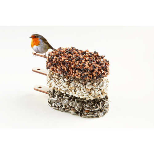 Studio Carmela Bogman Delicious Red vogelijsjes