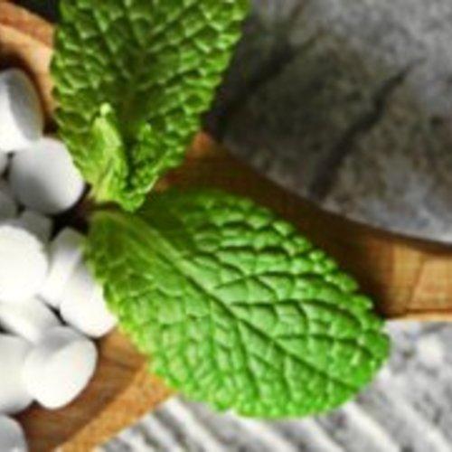 Greensweet Stevia Zoetjes