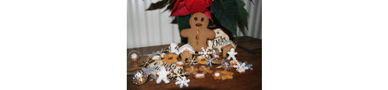 Low-carbohydrate Christmas cookies from Gingerbread a la Barbara