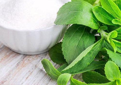 Wat is Stevia?