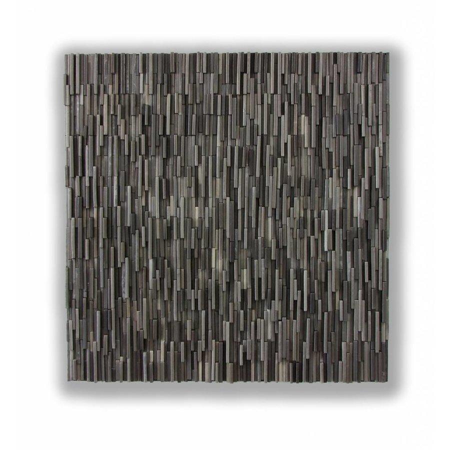 Suus Kooijman - Abstract