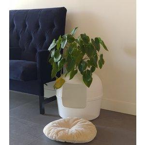 RHRQuality Ersatzkissen Creme - Kattentoilette Flower