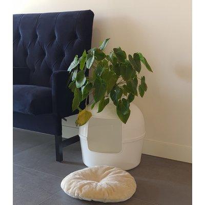 RHRQuality Ersatzkissen Creme - Katzentoilette Flower