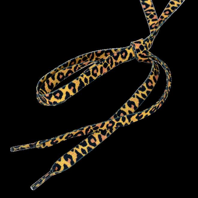 Moxi Panther Laces - 274cm