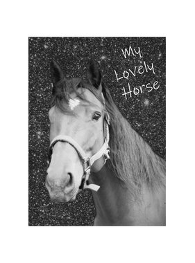 Animal Pictures Lovely Horse Diary A6