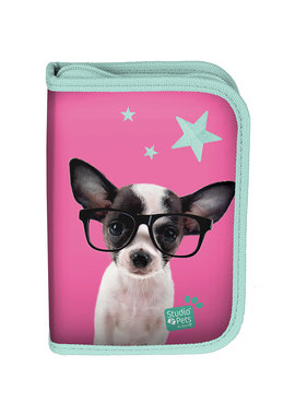 Studio Pets Chihuahua Filled Case 19.5 x 13 cm