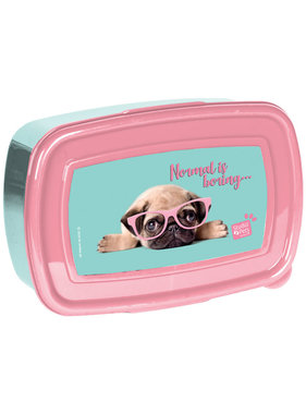 Studio Pets Lunch box normal is bore 18 cm