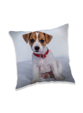 Animal Pictures Cushion Puppy 40 x 40 cm