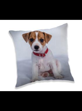 Animal Pictures Kussen Puppy 40 x 40 cm