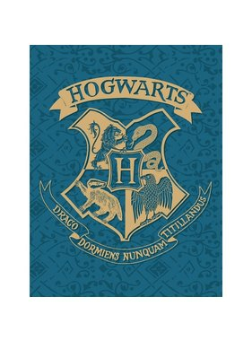 Harry Potter Fleece blanket Hogwarts 130 x 170 cm