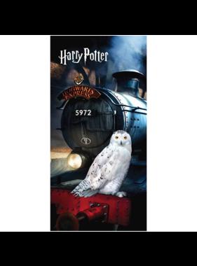 Harry Potter Beach towel Hedwig 70 x 140 cm Cotton