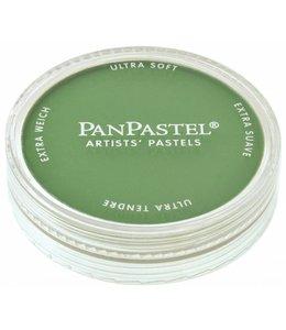PanPastel PanPastel 9ml Chrom.Oxidgrün