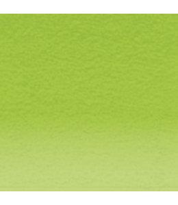 Derwent  Derwent Pastel Pencil May Green