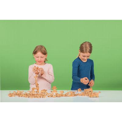 Houten lego 500 stuks