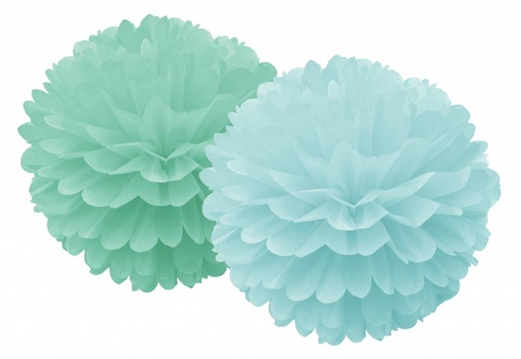 Set van 2 munt pompoms