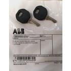 ABB Vynckier Set Sleutel V2432E per 2
