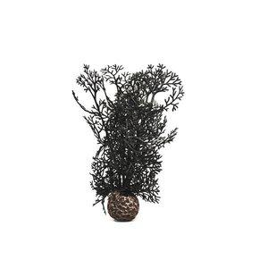 biOrb Sea fan zwart small 20cm