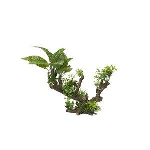 Aqua D'ella Flora-scape 5 XL