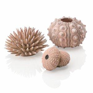 biOrb Zee-egel decoratieset urchin naturel
