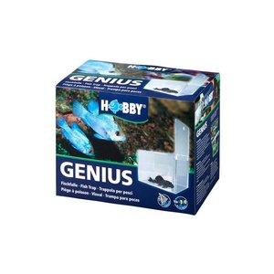 Hobby Hobby Genius Visval