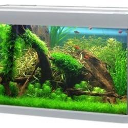 AkvaStabil aquaria