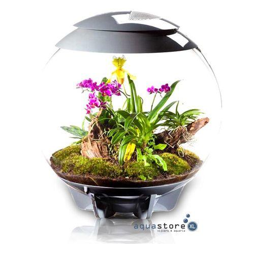 Biorb Air terrarium