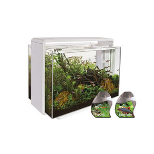 Superfish Home 80 aquarium WIT