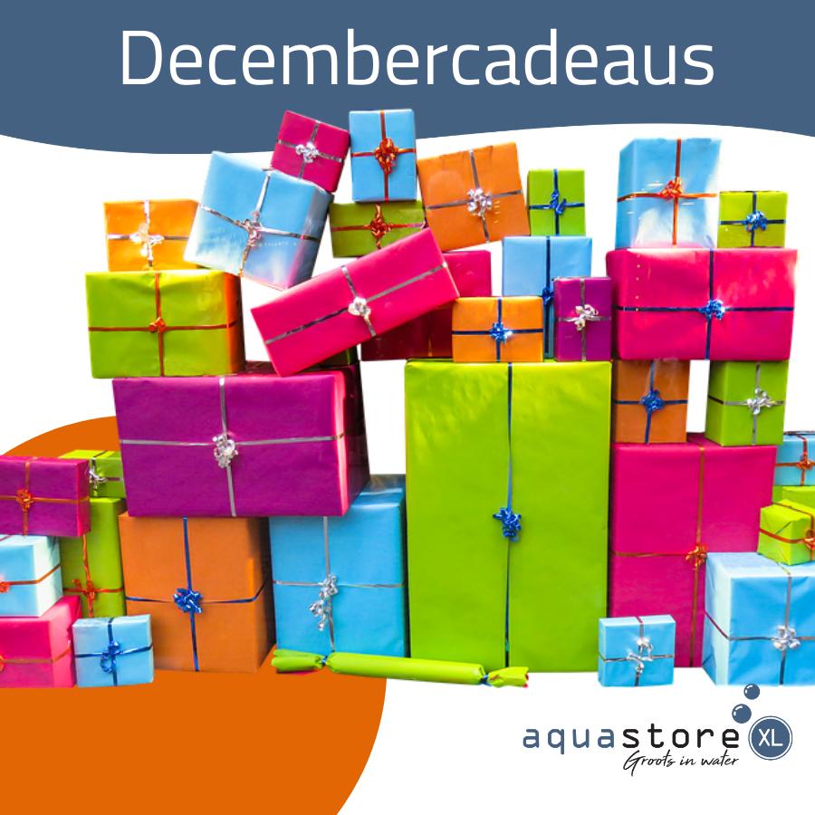 December cadeau top 100