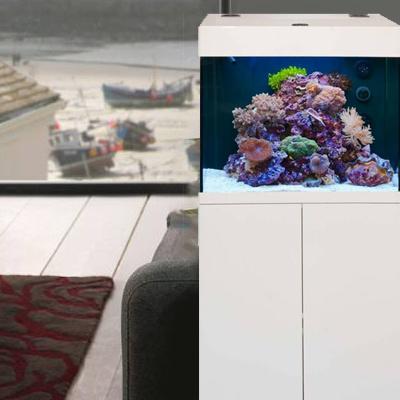 Zeewater Aquarium