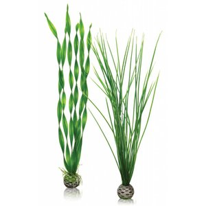biOrb Easy plants 2x large groen