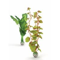 biOrb Zijde plant 2x medium groen/groen