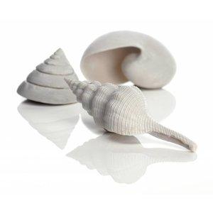 biOrb Sea Shells