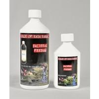 House of Kata Bacterial Feeding 500 ml