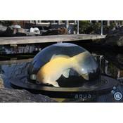Aquaforte Fish globe XL 500 Pro