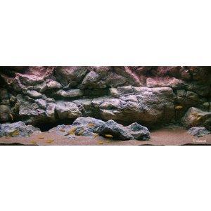 Rockzolid Background Komodo Grey 128x48cm