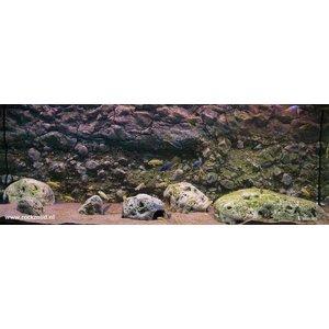 Rockzolid Background Sandstone 128x48cm