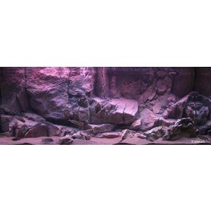 Rockzolid Background Kisar Grey 98x48cm