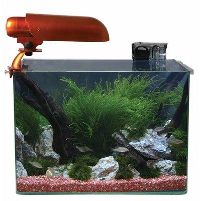 Aquatic Nature Cocoon Aquarium (nr 6)