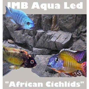 JMB african cichlids aqua light 18w / 060cm