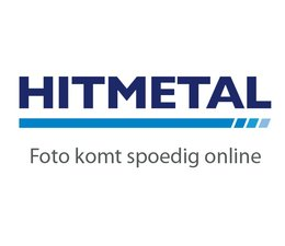 Poortpalenset ☐ 60x60 EP doorboorscharnier Gecoat