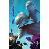 Interstat - Uitnodigingskaart - Dolfijnen - 6st.