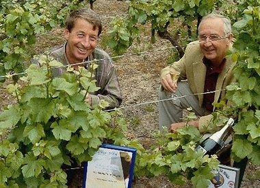 Vignoble des Agaises