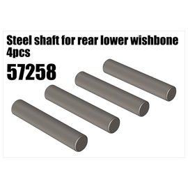 RS5 Modelsport Steel shaft for rear lower wishbone