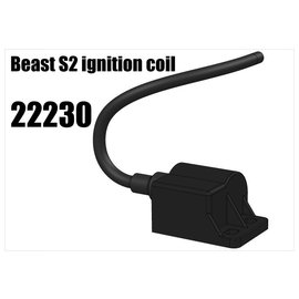 RS5 Modelsport Beast S2 ignition coil