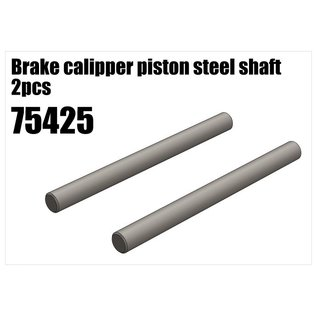 RS5 Modelsport Brake calipper piston steel shaft 2pcs