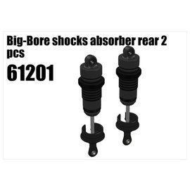 RS5 Modelsport Big-Bore shocks absorber rear